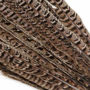20pcs Natural Pheasant Tail Feathers 12-14 Inch Long Craft Party DIY#SO