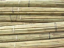More details for 8ft tonkin bamboo canes 14/16mm diameter bamboo plant support canes