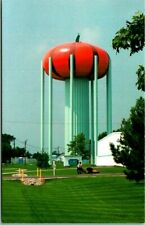 CIRCLEVILLE PUMPKIN SHOW Ohio Postcard Pumpkin Water Tower View c1970s Unused