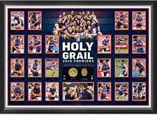 THE HOLY GRAIL - 2016 PREMIERS - WESTERN BULLDOGS - LTD ED PRINT - TOP QUALITY