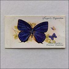 John Player Butterflies 49 Indian Empire Centaur Oakblue Cigarette Card (Cc17)