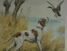 1935 PRINT CANARD DUCK HAND SIGNED PAUL WOOD DOG ETCHING
