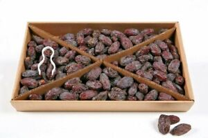 Medjool Dates 10kg Class 1 Fresh 100% Natural Juicy South African Large Free P&P