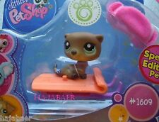 ☆♥ Littlest Pet Shop ♥☆ OTTER  SEAOTTER #1609 ♥☆ SPECIAL EDITION ♥☆ NEU RAR OVP