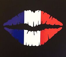 FRENCH Lips Car Sticker 12.5cm Iphone Ipad  Wall Art Tricolour Citroen C4 paris