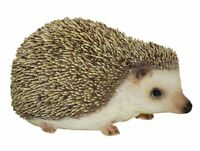 Hedgehog Pygmy - Lifelike Ornament Gift - Indoor or Outdoor - Pet Pals Cute NEW