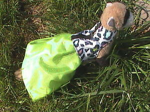 Ferret Harness Dress - Lime Leopard Dream