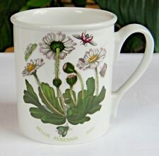 "Portmeirion BOTANIC GARDEN 3-5/8"" DAISY BREAKFAST MUG Green Letters Older Mark"