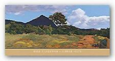 MOUNTAIN ART PRINT Summer Vista Mary Silverwood