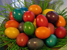 4 Colors Paint Color Dip Decorate Dye Dyeing Decorating Painting EASTER EGG