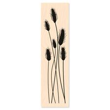 """Holzstempel Lagurus """"Chatons"""", 3,5x14cm(Motivgröße)"""