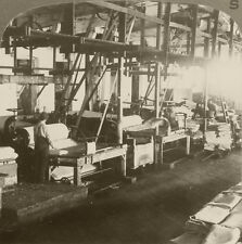 Underwood Stereoview Machines Marking Sheets of Wood Pulp to Make Paper,WI 1900s