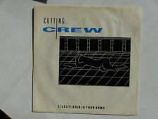 CUTTING CREW Died in your arms  90280