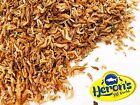 HERONS Dried Shrimp, 3 sizes - small, medium, large TURTLE TERRAPIN CICHLID FOOD