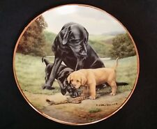 Franklin Mint Spring Training Nigel Hemming Labrador Retrievers Collector Plate