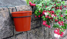 "6 Plant Pot Holders/Hangers,To hang 7"" Plant Pots on a WALL. Single brick width."