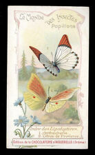 chromo AIGUEBELLE-le monde des insectes papillons ANTHOCHARIS-CITRON DE PROVENCE