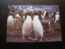 TAAF - carte postale (animaux) (B12)