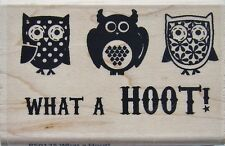 WHAT A HOOT! Rubber Stamp PS0125 Hampton Art BRAND NEW! Janet Dunn owls birds