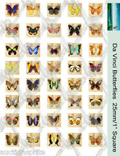 "40 Da Vinci Butterfly Images 25mm /1"" Square Collage Paper - Glass Tile Pendants"
