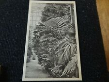Royal Botanic Gardens Kew Temperate House Postcard London - 21496