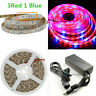 Waterproof SMD 5050 LED Strip Grow Light Lamp Full Spectrum With Power for Plant