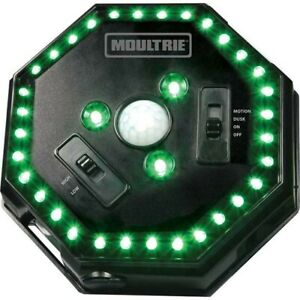 Moultrie MFA-12651 Feeder Hog Light with 35 LEDs