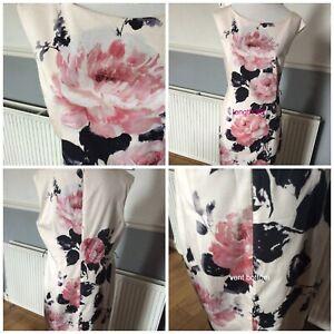 Phase Eight Carrera Rose Ivory Pink Black Cotton Dress Size 18 Pristine