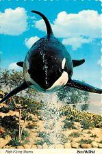 Shamu Killer Whale Sea World San Diego CA Aurora OH Orlando FL Postcard