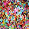 Rainbow Confetti Biodegradable Wedding Confetti, Table Confetti Festival Wedding