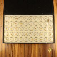 Goldnugget Sammlung aus Australien vom Fachhändler mit Garantie Geschenk Barren