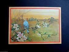 Vintage Unused Xmas Greeting Card Pretty Exotic Bird on Floral Branch