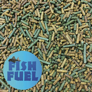 Fish Fuel Cichlid Sticks - 2.5mm SInking Fish Food - Premium Tropical - Malawi