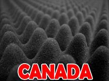 "Soundproofing 2.5"" Acoustical Eggcrate Foam (CANADA)"