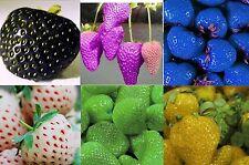 100Samen von Erdbeeren,grün,weiß,lila,blau,schwarz,gelb,Samen,Saatgut,rar,selten