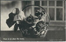 BB-114 There is No Place Like Home, Three Kittens in Basket, 1911 Postcard