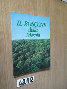 IL BOSCONE DELLA MESOLA (42A2)