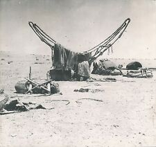 ALEP c. 1940 -  Selle Tribus Chamelières  Syrie  - DIV 7312