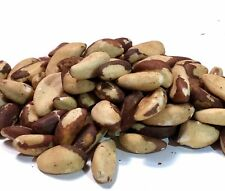 Whole Shelled Fresh Raw Brazil Nuts UNSALTED 1 LB FREE SHIPPING