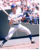 8x10 photo,Baseball, Rand Hundley, Chicago Cubs ~ Batting ~ Game Action!