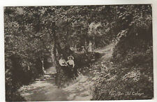 Fairy Glen - Old Colwyn Photo Postcard 1925 / Conwy