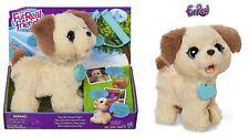 Hasbro FurReal Friends Mein Ich deve volte Cagnolino Bambini Animale Peluche
