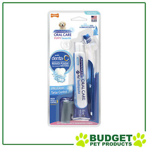 Nylabone Advanced Oral Care Puppy Toothbrush And Toothpaste Dental Kit Dog