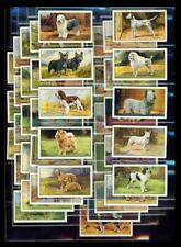 SET – 48 x DOGS (A SERIES) – GALLAHER – 1936