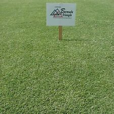 Pennington Triangle Bermuda Grass Seed - 10 Lbs. (Covers 5,000 sq. ft.)