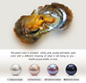 Natural 5/10/25/100 PCS Individual Wrapped Oysters with 8-9mm Large Pearls Gift