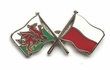 Wales & Poland Flags Friendship Courtesy Enamel Lapel Pin Badge