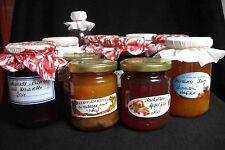Marmelade-Gelee-Konfitüre-Säfte eigener Anbau ungespritzt versch.Sorten