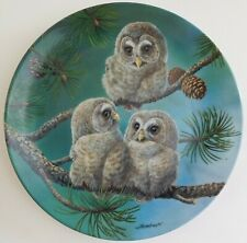 Knowles Whoo's There Barred Owls Plate Joe Thornbrugh Baby Owls #8 Usa Bradford