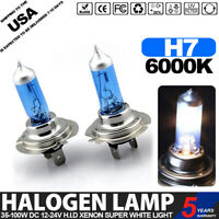 2-Bulbs H3 100 Watt Halogen Bulb 24V 100W Long Life T3 Cars PK22S Fog lights